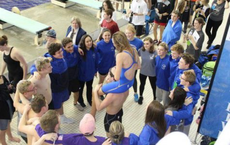 South swim and dive wraps up their season