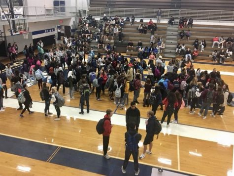 Students stand South strong in a walkout for Parkland