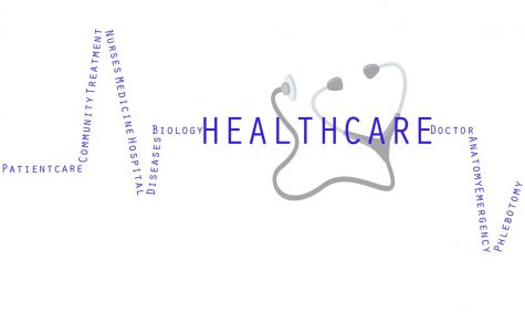 South's healthcare opportunities