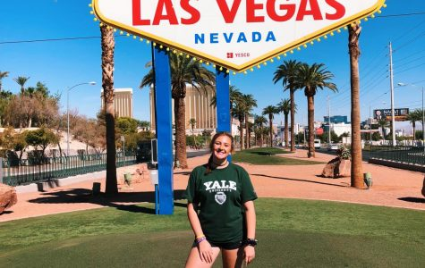 Seeing the Strip: my trip to Las Vegas