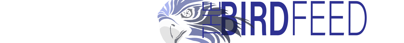 The Student News Site of South Forsyth High School