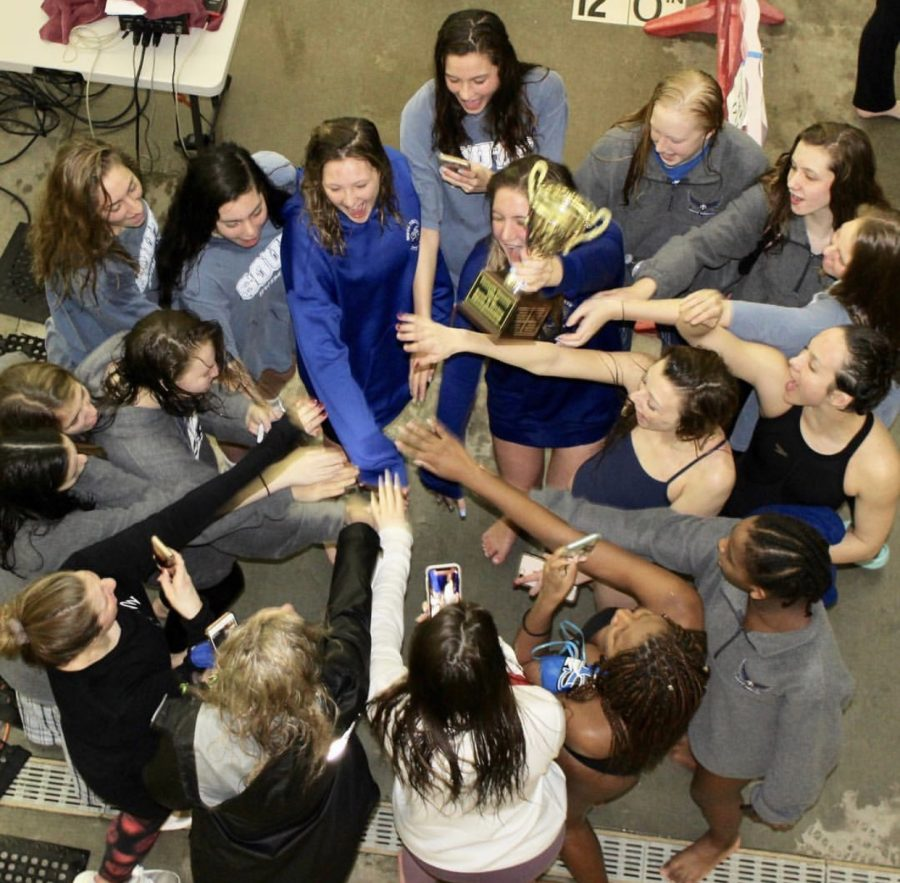 South Forsyth Swim and Dive team break the streak
