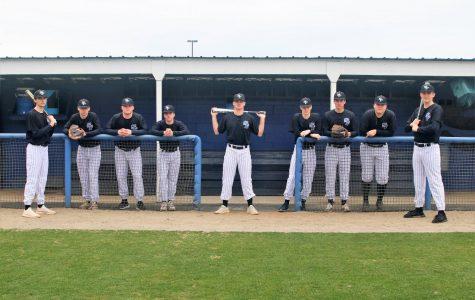 Looking forward to the upcoming baseball season
