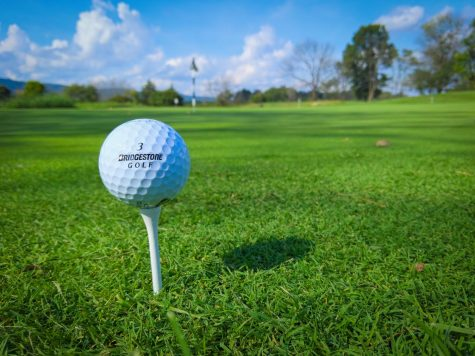 2020 Masters Tournament. The 2020 Masters features prominent golfers like Tiger Woods, Jordan Spieth, Justin Thomas, and many others. However, Dustin Johnson came from behind and took home his first career Green Jacket.