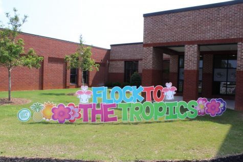 Flock to the tropics! South Forsyth greets both returning and new faculty and students with a tropical-themed campus. The staff sprawled blue flamingoes all around the front of the main hall to accompany their Hawaiian theme.